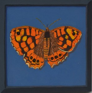 Un papillon francais #3, 2016, Gouache on board, 18 x 18cm