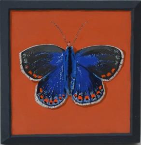 Un papillon francais #2, 2016, Gouache on board, 18 x 18cm