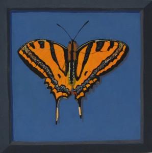 Un papillon francais #1, 2016, Gouache on board, 18 x 18cm